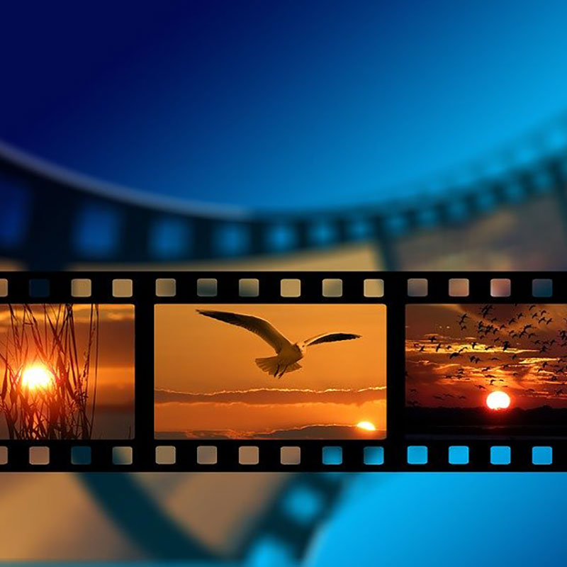 Edición De Vídeo Desde Cero Con Adobe Premiere 2019